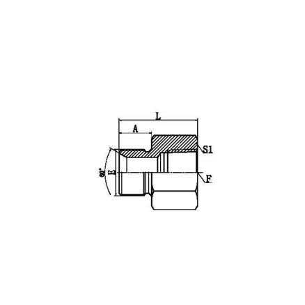 BSP Adapter,Japanese BSP Thread 60° Cone Fitting,BSP Thread